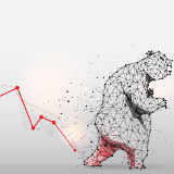 A bear trend is the term describing an extended price decline