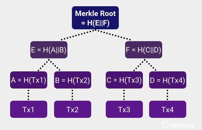 The PoW consensus algorithm involves finding the Merkle Root